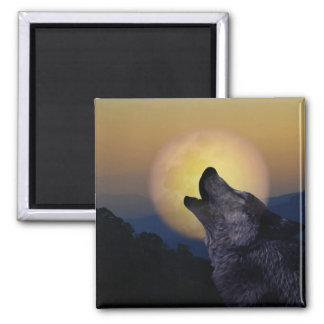 Wolf howling at the moon magnet