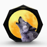 """Wolf howls at the full moon award<br><div class=""""desc"""">The wolf walks beside us to remind us of the lessons we&#39;re here to learn. Over protection can mean one needs to learn how to trust others. Territorial issues are lessons of letting go. But the positives are there too. The wolf tries to show us our innate ability to &quot;sense&quot;...</div>"""