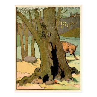 Wolf in the Dark Forest Postcard