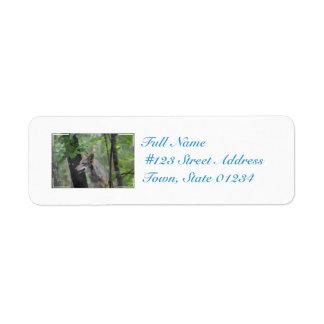 Wolf in the Wilderness Custom Return Address Label