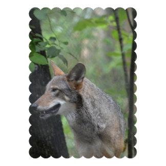 Wolf in the Wilderness Custom Invitation