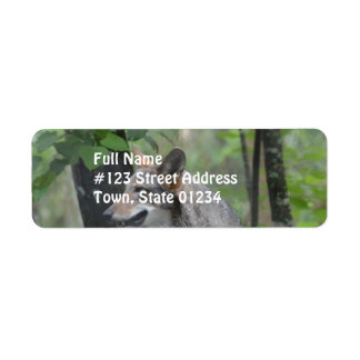 Wolf in the Wilderness Labels