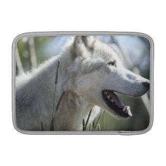 Wolf in Yellowstone 2 MacBook Sleeve