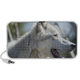 Wolf in Yellowstone 2 Laptop Speaker