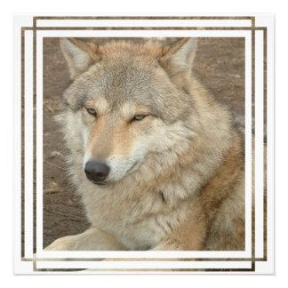 Wolf Invitation