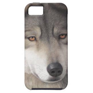 Wolf iPhone 5 case