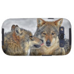 Wolf Kiss Samsung Galaxy SIII Covers