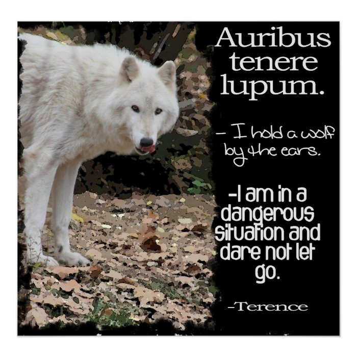 LATIN QUOTE BY TERENCE AURIBUS TENERE LUPUM which means I hold