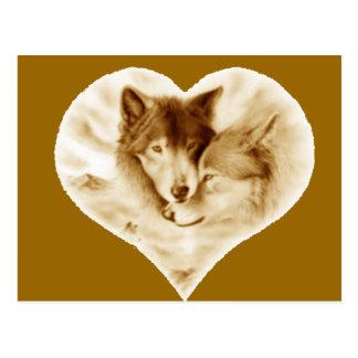 Wolf Love Postcard