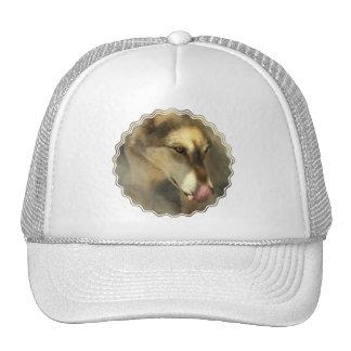 Wolf Lunch Baseball Hat