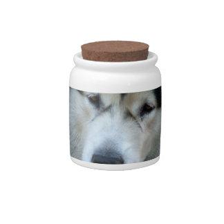Wolf Malamute  Candy Jar