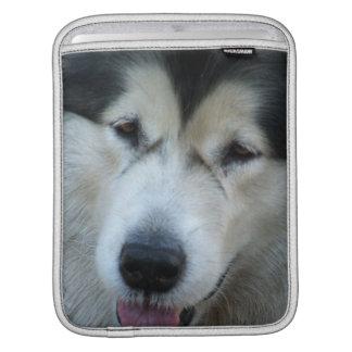 Wolf Malamute  iPad Sleeve