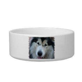 Wolf Malamute Pet Bowl Cat Food Bowl