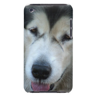 Wolf Malamute Picture iTouch Case Barely There iPod Covers
