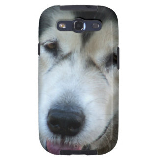 Wolf Malamute Picture Samsung Galaxy Case Galaxy S3 Cases