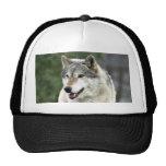 Wolf Mesh Hats