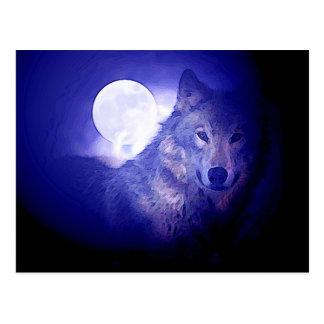 Wolf & Moon Postcard