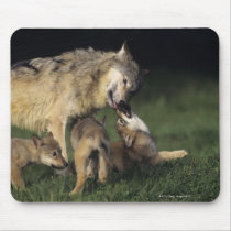 Wolf Mother with Pups Mouse Pad