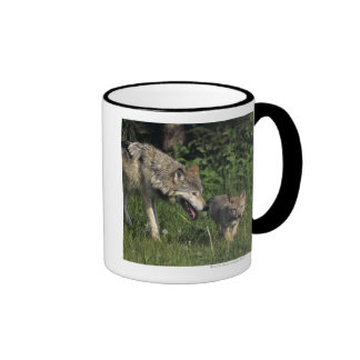 Wolf mother with young pup mugs