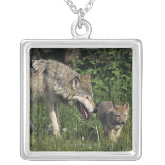 Wolf mother with young pup square pendant necklace