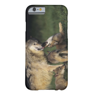 Wolf mother with young pups barely there iPhone 6 case