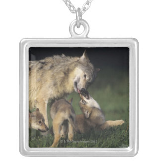Wolf mother with young pups square pendant necklace