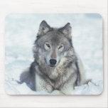 Wolf Mousepads