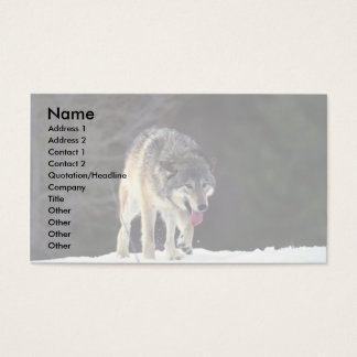 Wolf on snowy horizon business card