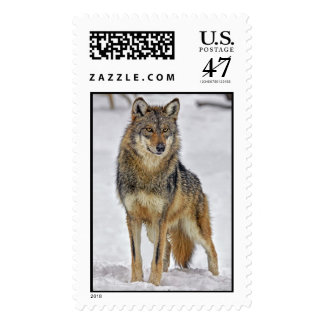 Wolf On Watch Postage