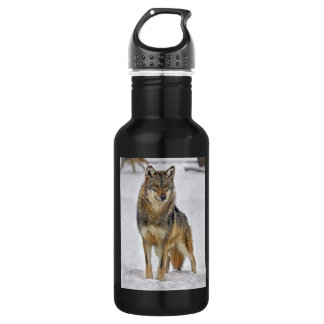 Wolf On Watch Stainless Steel Water Bottle