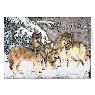 Wolf Pack-BD Greeting Cards