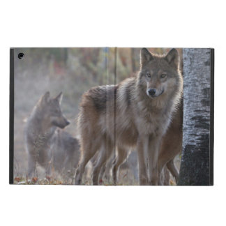 Wolf pack iPad air covers