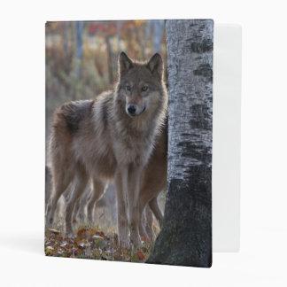 Wolf pack mini binder
