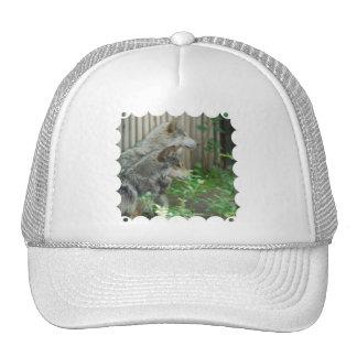 Wolf Pair  Baseball Hat