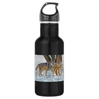 Wolf Pair in Snow 18oz Water Bottle