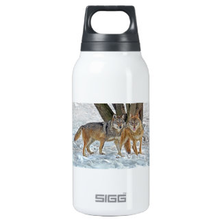 Wolf Pair in Snow SIGG Thermo 0.3L Insulated Bottle