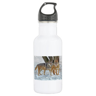 Wolf Pair in Snow Stainless Steel Water Bottle