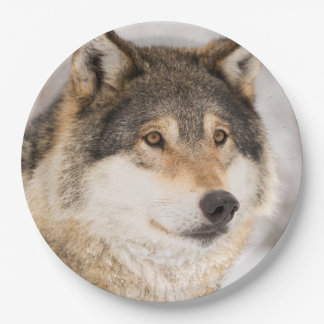 Wolf Paper Plate