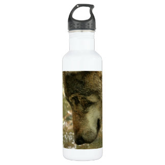 Wolf Pawing Water 24oz Water Bottle