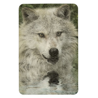Wolf Pencil Drawing Art Magnet