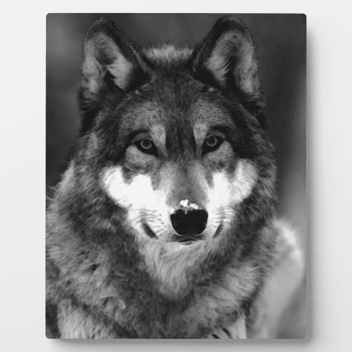 Wolf Photo Plaques