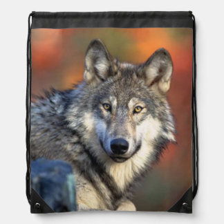Wolf Photograph Drawstring Backpack