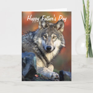 Happy grey wolf cards zazzle wolf photograph happy fathers day card m4hsunfo