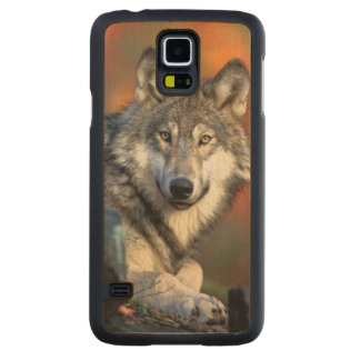 Wolf Photograph Image Carved Maple Galaxy S5 Case