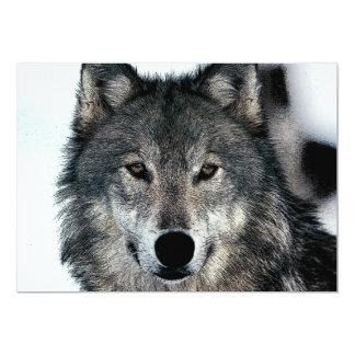 Wolf Portrait Invitation