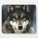 Wolf Portrait Mousepads