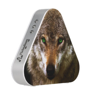 Wolf Profile with green eyes ~ editable background Speaker