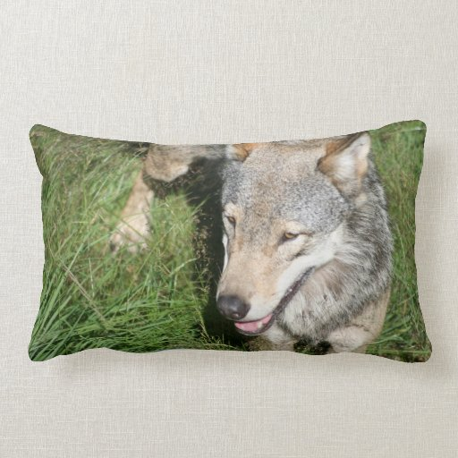 Wolf Prowl Pillow