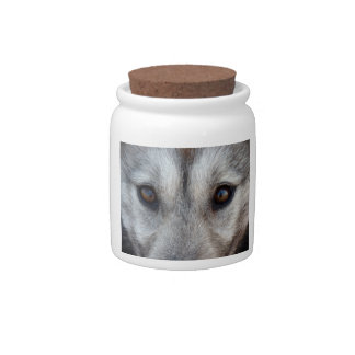 Wolf Pup Jar Cool Siberian Husky Candy Jars Gifts