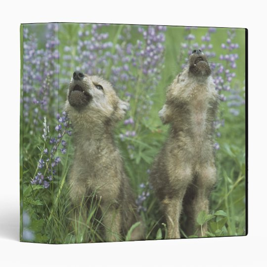 Wolf Puppies Howling In Meadow Binder